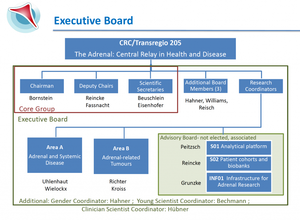 Executive Board, CRC/TRR 205, The Adrenal: Central Relay in Health and Disease